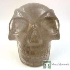 traveler skull