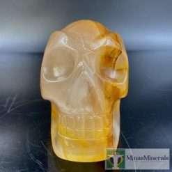 Golden healer traveler skull 27